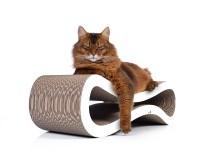 Tiragraffi per gatto Cat Racer