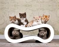 tiragraffi per gatti Singha M - colore: 000x